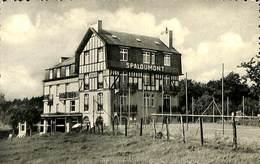025 947- CPSM - Belgique - Spa - Spaloumont - Spa