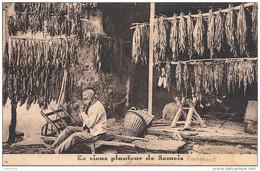 ROCHEHAUT ..-- TABAC . Le Vieux Planteur De Tabac . Tarif Au Verso . - Bouillon