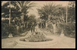 MARSALA (TRAPANI)  VIALE DELLE PALME 1917 - Marsala