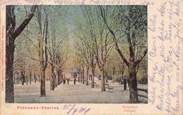 Czech Rep. - TRENCIN - Curhaus - Czech Republic