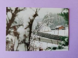 Luxeuil Les Bains Maison Forestière Haute  Saône Franche Comté - Francia