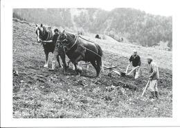 Les Gens De La Montagne - Bauern