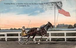 "010375 ""LEXINGTON - TROTTING HORSE A FANILIAR ON THE RACE TRECK"" ANIMATA, CAVALLO.  CART SPED 1917 - Lexington"