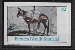 Thème Cactus - Bernera Island -  Neufs ** Sans Charnière - TB - Sukkulenten