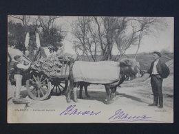 Ref5885 CPA Animée De Biarritz - Attelage Basque Boeufs - Ouvrard Photos - Cargaison De Tuiles 1902 - Spannen