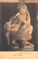 NAPOLI. Museo Nazionale. Venere Dal Bagno. - Napoli (Naples)