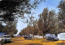 11 - Fitou - Camping Des Saules (oldtimer CItroën  DS Break Ami 8 Ou Super ? 1970 (prix Fixe) - Autres Communes