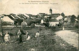 11. Les Environs De Vauvillers - MELINCOURT - VUE GENERALE - Autres Communes