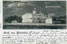 Gruss Aus Biesenthal. Seeschlösschen. 1899 - Biesenthal