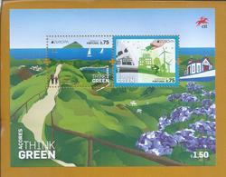 Environmental Protection Block In The Azores. Santo Cristo Church. Lago Sete Cidades. Grazing Cows. Orchids. Whales Sea. - Protection De L'environnement & Climat
