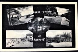 """Netherlands, Uncirculated Postcard,  """"Architecture"""", """"Landscapes"""", """"Nunspeet"""" - Nunspeet"""