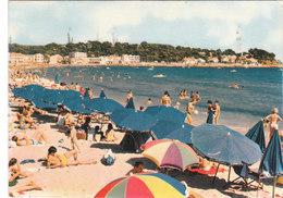 Carte Postale Des Années 70 Du Var - Les Sablettes - La Plage - La Seyne-sur-Mer