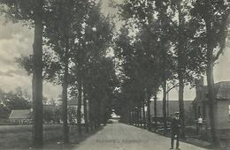 Old Cpa  Rijksweg BABBERICH - Pays-Bas