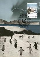 """Entier Postal De 2014 Sur CP Avec Timbre Et Illust. """"Douglas Mawson Assis Sur Un Bateau"""" - Oblit. PJ 18 Février 2014"""" - Maximum Cards"""