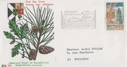 Enveloppe  FDC   Oblitération   Flamme   FRANCE  Jumelage   Forêt  De  RAMBOUILLET   1968 - FDC