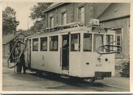 TRAM :  Bastogne - Martelange :  Gare De Martelange       : (  Foto    )  15 X 10.5 Cm - Tramways