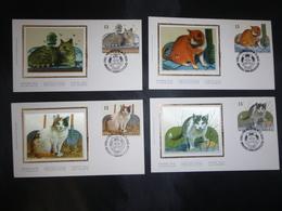 """BELG.1993 2521 2522 2523 2524 FDC's Zijde/soie   : """"Nature , Katten / Chats """" - 1991-00"""