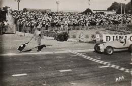 CPA ALBI GRAND PRIX 1952 @ TRINTIGNANT @ - Albi