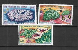 Côte Des Somalis Poste Aérienne  1963     - YT N° 34, 35, 36,  N**  MNH - Nuovi