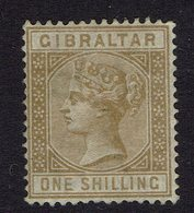 1 Shilling Michel No. 14 NO GUM - Gibraltar