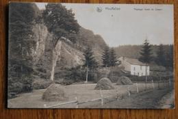 2402/HOUFFALIZE- Paysage De Cowan - Houffalize