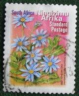 FLOWERS BLUE MARGUERITE  Flower Fleur Blumen 2000 Mi - Y&T - Used Gebruikt Oblitere SUD SOUTH AFRICA RSA - Afrique Du Sud (1961-...)