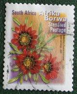 FLOWERS BOTTERBLOM  Flower Fleur Blumen 2000 Mi - Y&T - Used Gebruikt Oblitere SUD SOUTH AFRICA RSA - Afrique Du Sud (1961-...)