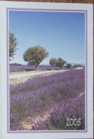 Petit Calendrier De Poche 2003 La Poste St Genies Des Mourgues Hérault - Champ De Lavande - Calendars