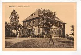 MESSANCY - Château Castillon. - Messancy