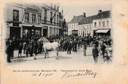Waereghem Dag Den Pardenloopstrijden 1901 Paardenwedstrijd Groote Markt - Waregem