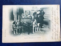 """""""Laitière Flamande Avec Charette Et 5 Chiens """"(2254)--16/08/1899 - Artisanat"""
