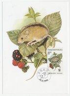 Maximum Card Czech Republic 1996 Mouse - Blackberry - WWF - Timbres