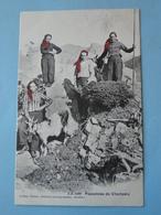Cpa Suisse) -- CHAMPERY -- Paysannes De Champéry Et Leur Chèvre - ANIMEE - Cpa 1906 - VS Valais