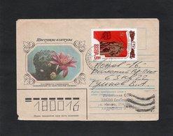 LSC - URSS - Enveloppe Illustrée  CACTUS - Sukkulenten