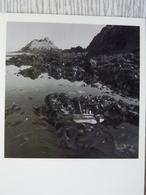 CP- Belle-ille 1985, Piège Végétal - Belle Ile En Mer