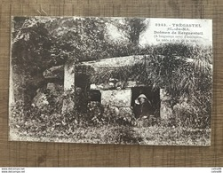 TREGASTEL Dolmen De Kerguentuil - Trégastel