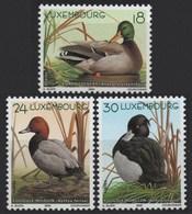 Luxembourg 2000 Ducks, MNH ** Mi 1503/5 (Ref: 1594) - Luxembourg