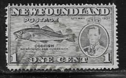 Newfoundland Scott # 233a Used Codfish, 1937 - Newfoundland