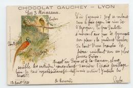 SUPERBE CPA 1900 PRECURSEUR PUBLICITE CHOCOLAT GAUCHEY LYON ILLUSTRATEUR OISEAUX - Werbepostkarten