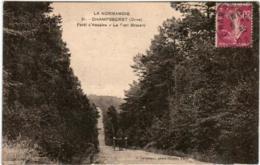 41lps 830 CPA - CHAMPSECRET - FORET D' ANDAINE - LE PONT BROCARD - Frankreich
