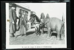 Le Cirque AMAR Réfugié à BLOIS   - Nain Avec Elephanteau Et Poney   - Coupure De Presse (encadré Photo) De 1942 - Documents Historiques