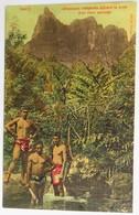 C. P. A. Couleur : TAHITI : Chasseurs Indigènes Suivant La Piste D'un Porc Sauvage - Tahiti