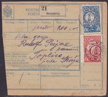 Slovenia, Chainbreakers, Parcel Card, Žužemberk, September 1919 - 1919-1929 Kingdom Of Serbs, Croats And Slovenes