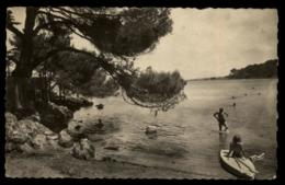 06 - Antibes Le Cap-d'Antibes - 2281 - La Garoupe Carrolls'Plage Antibes  #7089 - Antibes