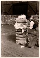 Photo Originale Chiffonnier Reconstituant Ses Balles De Laine Sur Un Quai De Chargement Vers 1940/50 - Professions