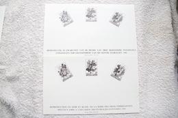 """2 Feuillets Noir Et Blanc """"A L'occasion Des Floralies Gantoises 1980"""" - Black-and-white Panes"""