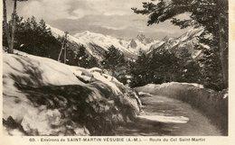 ROUTE DU COL SAINT MARTIN ENVIRONS DE SAINT MARTIN DE VESUBIE - Autres Communes
