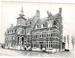 Neerpelt - Gemeentehuis - Neerpelt