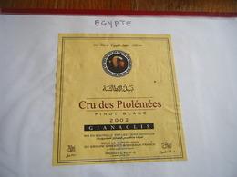 Lot étiquettes Vin EGYPTE AFRIQUE DU SUD - Etichette