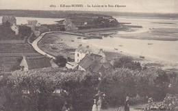 CPA Île-aux-Moines - Le Lairiot Et Le Bois D'Amour  (49262) - Ile Aux Moines